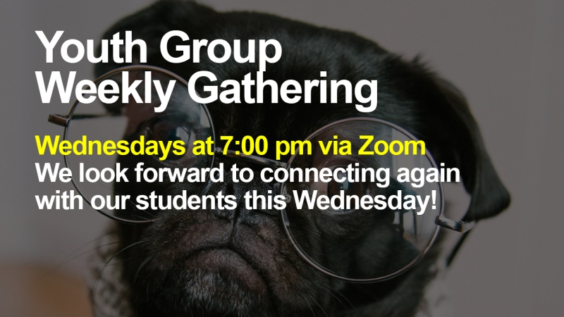 "Announcement - Image of dog wearing glasses with text overlaid, ""Youth Group Weekly Gathering Wednesdays at 7:00 pm via Zoom We look forward to connecting again with our students this Wednesday!"""