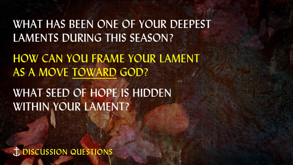 """Image of leaves in puddle with text overlaid, """"Discussion Questions; What has been one of your deepest laments during this season? How can you frame your lament as a move toward God? What seed of hope is hidden within your lament?"""""""