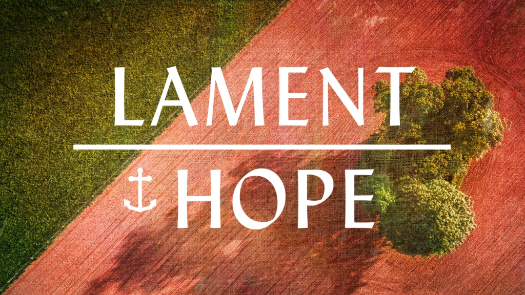 """Image of land divided into a grass field and dirt, with a tree planted in the dirt, with text overlaid, """"Lament / Hope"""""""